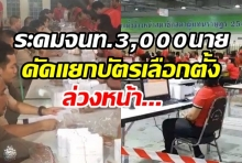 ไปรษณีย์ไทยระดมจนท. 3,000 นาย พร้อมคัดแยกบัตรเลือกตั้งล่วงหน้าจัดส่ง350เขตปลายทาง