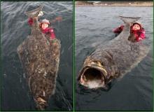 หนุ่มสวีเดนโชว์ตกปลายักษ์ 2 เมตร หนักร้อยกว่าโล ขายไม่ต่ำกว่า 3 แสนบาท