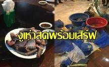 ผงะ! ร้านเปิบพิสดารกลางกรุง เจองูเห่าสดหั่นเป็นปล้อง ตั้งโต๊ะรอเสิร์ฟลูกค้า!