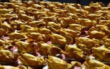 แก้บนไก่ต้มน้ำปลา 110 ตัว ไข่ 100 ฟอง หลังขายที่ดินได้เงินร่วม 20 ล.