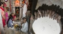 """""""วิหารคาร์นีมาทา"""" วิหารที่บูชาหนู เลี้ยงหนูดูแลอย่างดีกว่า 20,000 ตัว(มีคลิป)"""