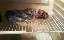 ตะลึง หญิงรัสเซียเก็บศพเอเลี่ยนแช่ตู้เย็น ผู้เชี่ยวชาญรุดตรวจสอบของจริงหรือไม่