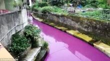 ไต้หวันช็อก แม่น้ำใช้ดื่มกินกลายเป็นสีม่วง