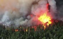 ไฟป่าสหรัฐฯ เผา 13 หลังคาเรือน ร้ายแรงที่สุดในรอบหลายปี!!!