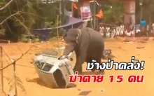 ช้างป่าคลั่ง!! เตรียมยิง! หลังอาละวาดฆ่าคนตายไปแล้ว 15 ราย!! (มีคลิป)