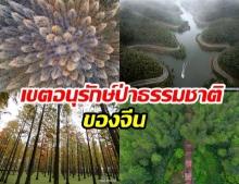 อยากให้เมืองไทยเป็นแบบนี้บ้าง พื้นที่เขตอนุรักษ์ป่าของจีน อย่างเริ่ด!
