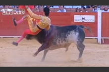นาทีระทึก! วัวกระทิงขวิดมาทาดอร์เสียชีวิตที่สเปน