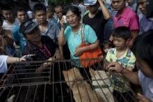 คุณป้าชาวจีนใจบุญควักเงิน ซื้อชีวิตสุนัขงานกินเนื้อหมา