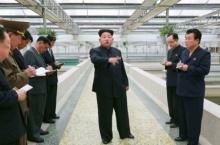 ท่านคิม!! เหี้ยมอีก สั่งประหารเจ้าของฟาร์มเต่า เพราะสาเหตุแค่นี้จริงเหรอ?