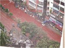 สุดสยอง!! บังกลาเทศจัดเทศกาลเชือดสัตว์พลีทาน แต่ฝนตกมาเลยเกิดแม่น้ำสีเลือด