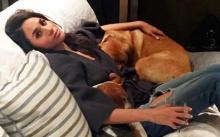 ดาราสาวคู่หมั้นเจ้าชายแฮร์รี่ ตัดใจจากสุนัขตัวโปรด ขึ้นเครื่องมาอังกฤษไม่ได้!! (มีคลิป)