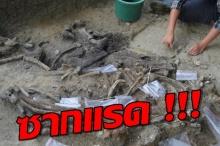 """ซาก """"แรด"""" บ่งบอกฟิลิปปินส์มีมนุษย์ยุคแรกอาศัยอยู่ 7 แสนปีก่อน !!"""