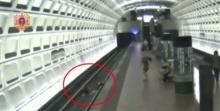 นาทีระทึก! ชายนั่งวีลแชร์พลัดตกรางรถไฟใต้ดิน โชคดีคนช่วยขึ้นทัน (มีคลิป)