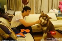 รวยเกิ๊น!! ลูกชายอภิมหาเศรษฐีจีนซื้อ iPhone 7 แปดเครื่องให้สุนัข