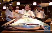 เตรียมอำลา! ตลาดปลาซึกิจิจัดประมูลปีใหม่เป็นครั้งสุดท้าย