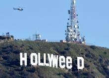 """ชาวเมือง งง !! จาก """"Hollywood"""" ถูกเปลี่ยนเป็น """"Hollyweed"""" !แค่ข้ามคืน!!"""