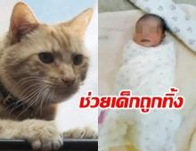 """แมวฮีโร่พาหนุ่มเจ้าของวิ่งตาม ก่อนผงะเจอ """"ทารก"""" แรกเกิดถูกทิ้งข้างที่เผาขยะ"""
