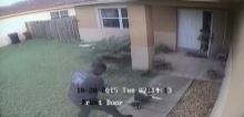 ช็อกหนัก!! ตร.ตรวจบ้านปชช.จู่ๆยิงสุนัขเจ้าของบ้านตายต่อหน้า(มีคลิป)
