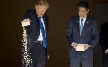 โธ่! ทรัมป์แค่ให้อาหารปลาก็ยังทำไม่เป็นเลย!! ชาวเน็ตญี่ปุ่นบ่นอุบ เทพรวดลงไปได้ไง (มีคลิป)
