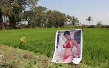 หุ่นไล่กาชิดซ้าย!! ชาวนาปักโปสเตอร์ดาราสาวหนังโป๊ เชื่อทำให้พืชผลดกทั้งแปลง!! (มีคลิป)