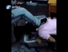 สุดช็อกนักเรียนรุมแกล้งเพื่อนด้วยการใช้เท้าเหยียบหัวแล้วให้เอาปากคุ้ยขยะ!! (มีคลิป)