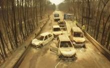 ย่างสดกลางถนน!!! ร้อนจัดไฟป่าปะทุในโปรตุเกส ยอดผู้เสียชีวิตพุ่ง 62 รายแล้ว (มีคลิป)