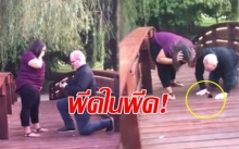 เฟลกว่านี้มีอีกไหม! หนุ่มเซอร์ไพรส์คุกเข่าขอแฟนแต่งงานบนสะพาน สุดช็อกทำแหวนกระเด็นตกน้ำ?! (คลิป)