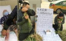 พ่อแม่จีนอับจน ยอมนั่งกินหญ้าขอเงินบริจาคไปรักษาลูกเป็นลูคีเมีย (มีคลิป)