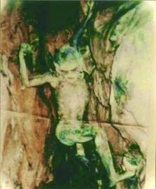 ไขปริศนา ! หนุ่มดับคาถ้ำ กับตัวประหลาด แท้จริงคือ ??