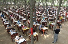 มัธยมในจีนเปิดป่าทำห้องสอบจัด800ที่นั่งให้นักเรียนคลายเครียด
