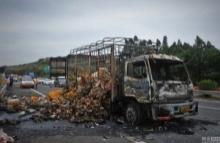 ย่างสดเป็ดกว่า 2,000 ตัวหลังรถบรรทุกเป็ดเกิดไฟไหม้กลางถนนหลวงในจีน