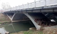 ชาวจีนตกใจหนัก!! เจอซากหนังสัตว์ต่างเกลื่อนใต้สะพาน